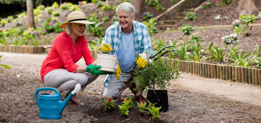senior male and female gardening