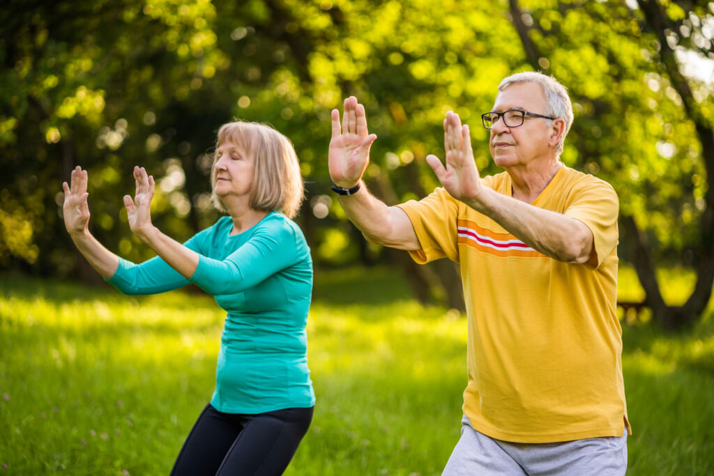 senior man and woman practicing Tai Chi in a meadow